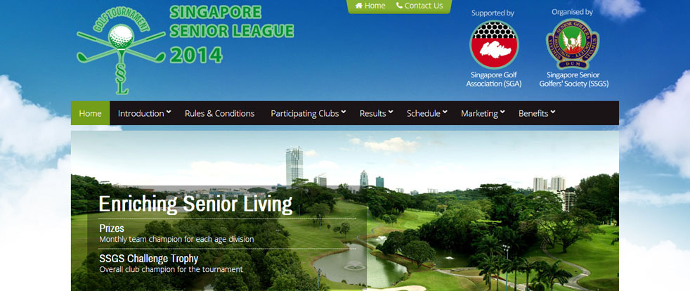 Singapore Senior League